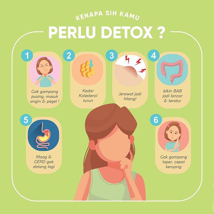 Pentingnya Detox Usus