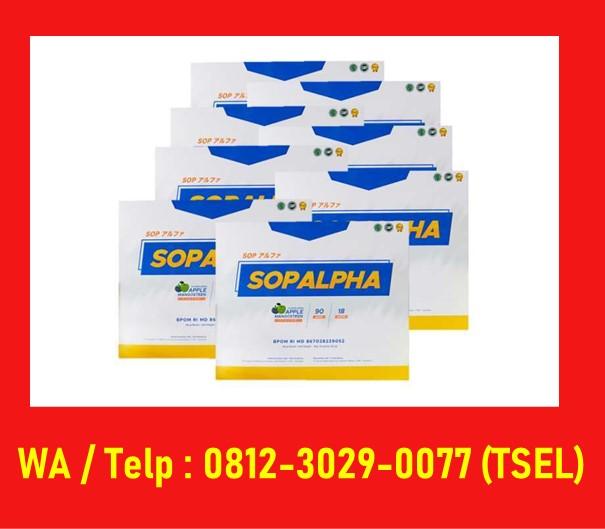 Product Sop Alpha