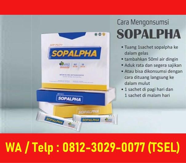 Tutorial Minum SOP Alpha